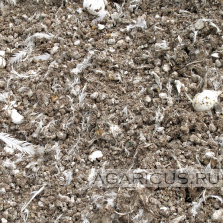 Chicken litter with a moisture content suitable for composting use without preparation